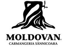 carmangeria-moldovan